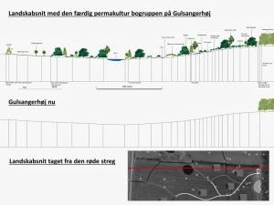 Tværsnit af landskab ved færdig permakulturprojekt på arealet - stående 2