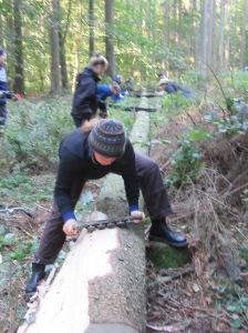 træfældningworkshop+skovhave 068